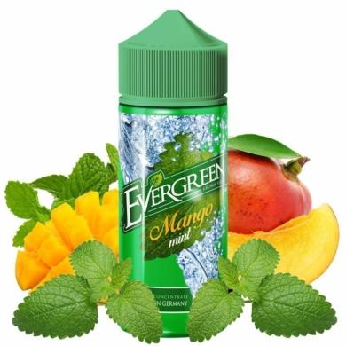 Evergreen / Mango Mint 30ml aroma