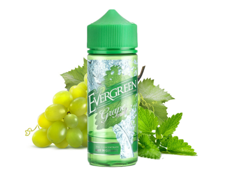 Evergreen / Grape Mint 30ml aroma
