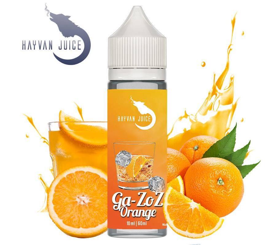 Hayvan Juice / Ga-Zoz Orange 10ml Aroma